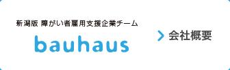 新潟版障がい者雇用支援企業チームbauhaus  会社概要